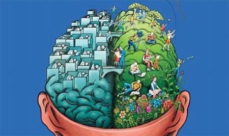 450-mozg